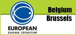 Feria de Bruselas